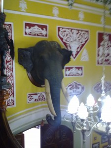 massive elephant head in Bangalore Palace