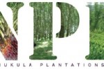 Namunukula Plantations PLC declares Final Dividend