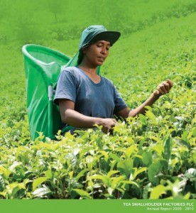 Tea Smallholder Factories PLC