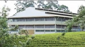 Watawala plantations PLC