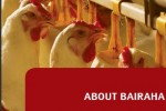 Bairaha Farms PLC Declares Final Dividend