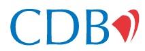 Citizens Development Business Finance PLC