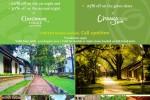 20% to 30% off on Cinnamon Lodge and Chaaya Village Habarana