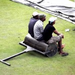 Srilanka Premier League (SLPL) Cricket fans enjoying cricket