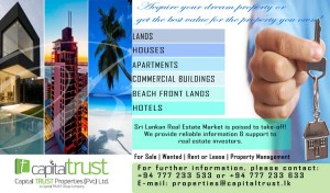 Capital Trust on Real estate Business