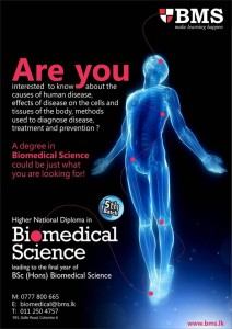 B.Sc (Hons) Biomedical Science from BMS