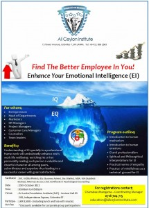 Enhance your Emotional Intelligence (EI) Workshop in Srilanka