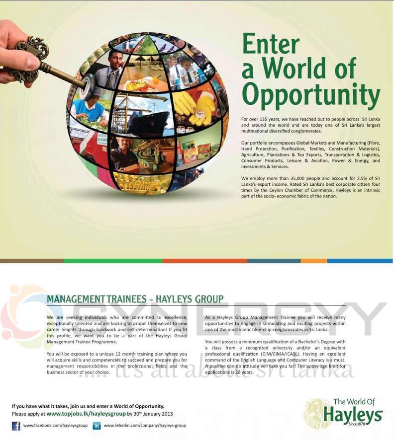 Hayleys Management Trainee Job Vacancy – Apply on or ...