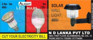 Solar Wall Light for Rs. 480.00
