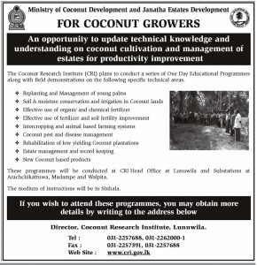 An opportunity to update technical knowledge and understanding on coconut cultivation and management of estates for productivity improvement
