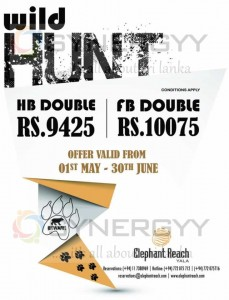 Elephant Reach Yala – Wild Hunt Offer from 1st May to 30th June 2013