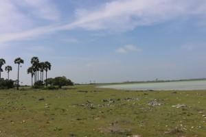 Delft Island Landscape
