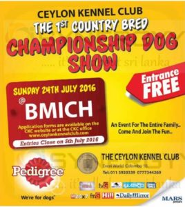 Ceylon Kennel Club – Championship Dog Show 2016