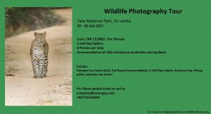 Wildlife Photographt Tours to Yala NP