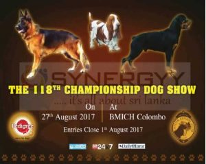 Championship Dog Shows at BMICH on 27th August 2017