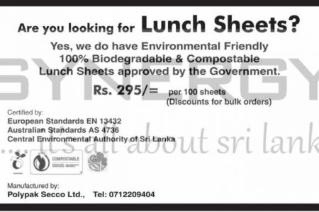 Environmental Friendly 100% Biodegradable Lunch Sheets for Rs. 2.95 per Sheet